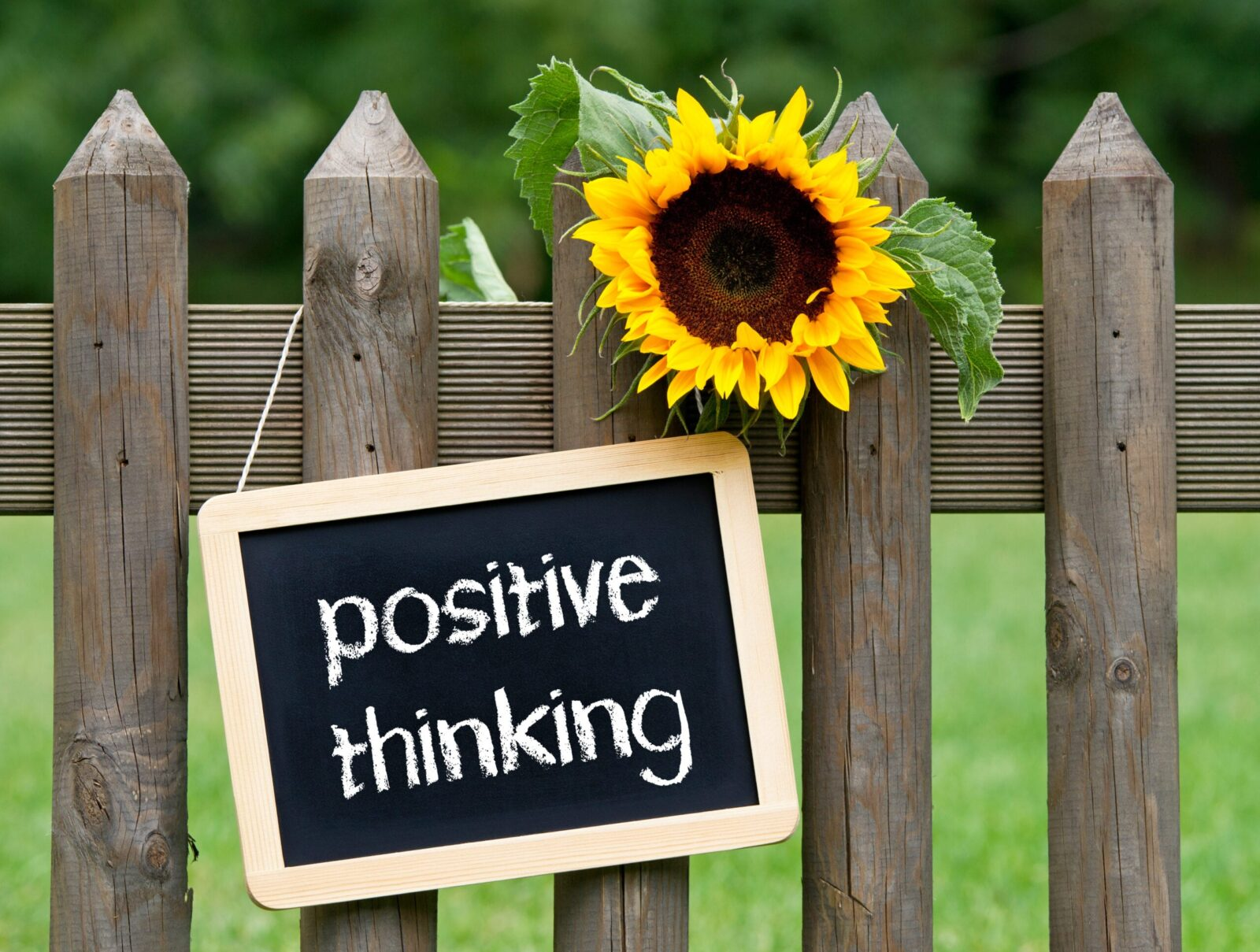 A Positive Thinking Sign Hanging on a Fence