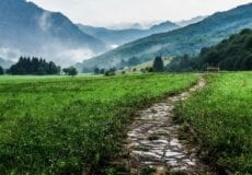 Path in a meadow surrounded by misty mountains